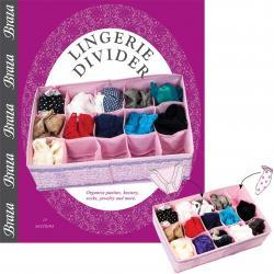 Lingerie divider organizes and protects underwear and hoisery
